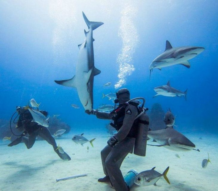 Позитив в фотографиях: 30 увлекательных и веселых фото